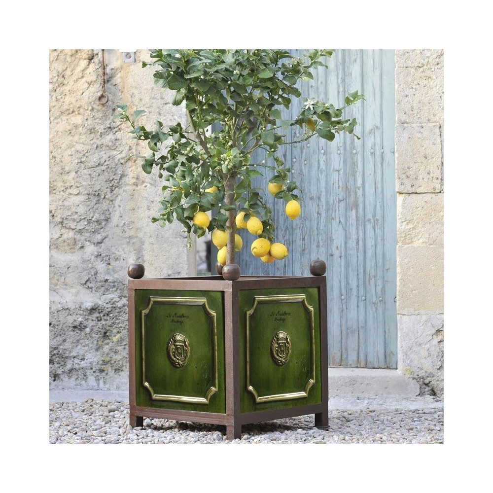 bac oranger poterie de la madeleine tradition vert. Black Bedroom Furniture Sets. Home Design Ideas